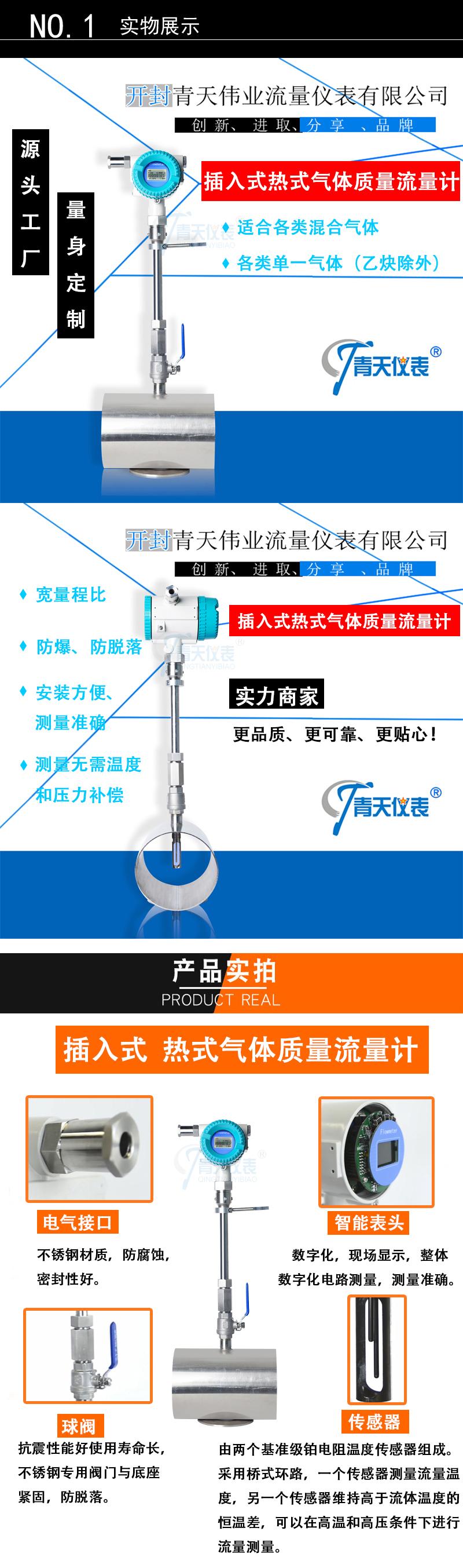 插入式热式气体质量流量计.jpg